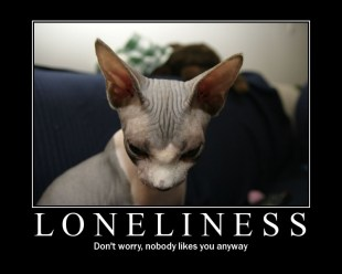 Loneliness (Motivator)