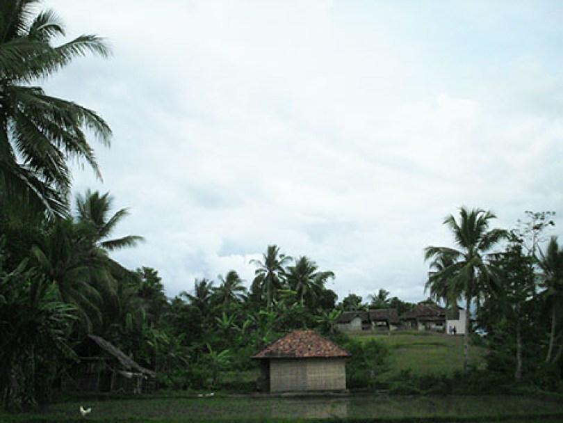 Perkampungan Sukarakhmat terlihat dari pesawahan