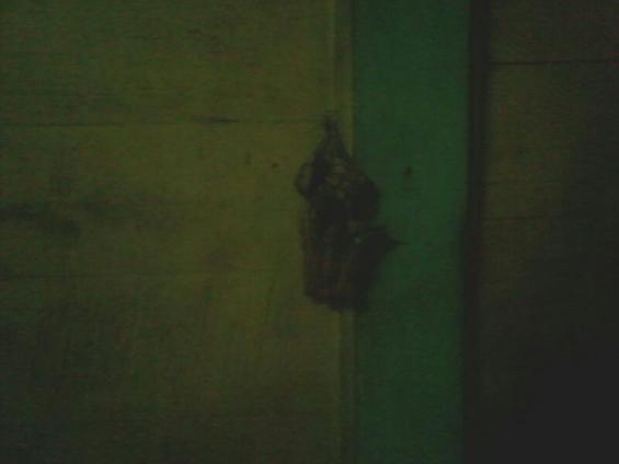 Ketupat yang digantung di sudut tertentu di dalam rumah Pethek.