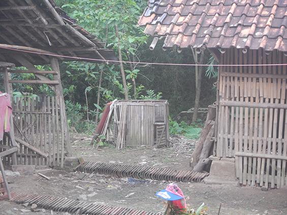 Penampakan halaman belakang rumah Bu Imas di hari ini.