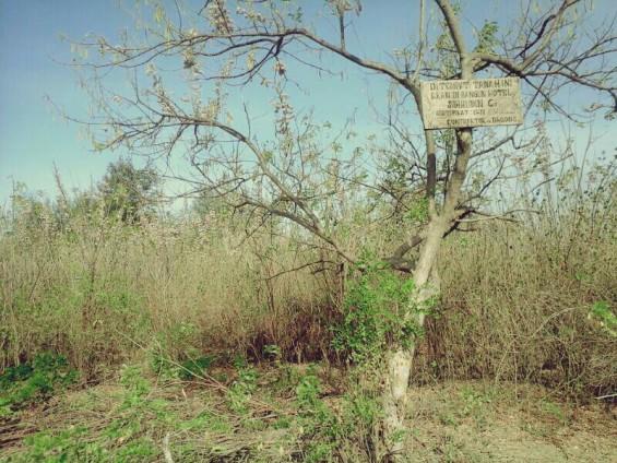 Pemilik Tanah memasang papan pengumuman di atas tanah mereka