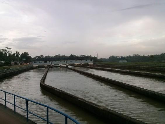 Ciujung's distribution lines, ending in Kragilan, Serang.