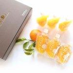 酸味や苦味も残したストレート果汁100%使用の本格ヘルシー「ジュレ」。