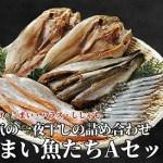 うまい魚たち<A>セット /ホッケ/鮭ハラス/コマイ/カラフトししゃも
