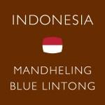 インドネシア マンデリン ブルーリントン  ¥972 (税込) ~ ¥1,944 (税込)