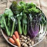 野菜の他、季節の山菜・果実や農産加工品が入る事もあります。2,510 円