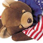 あどけない寝顔がかわいい 星条旗をデザインしたかわいいクマの枕