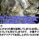 10名様用の牡蠣★10kg(約140粒)宮城県産 殻付き 牡蠣 殻付き