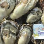 牡蠣 5kg(約67粒)宮城県産 殻付き 牡蠣 殻付き【無選別牡蠣】牡蠣 殻付 カキ