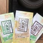 産地直送‼︎八女茶100%‼︎お試し煎茶100g3本セット!