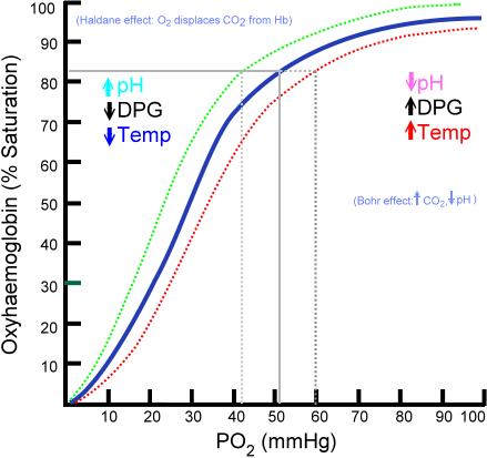 Oxyhaemoglobin_dissociation_curve.png