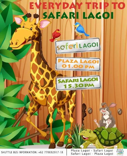 Jadwal Shuttle Bus ke Safari Lagoi Bintan