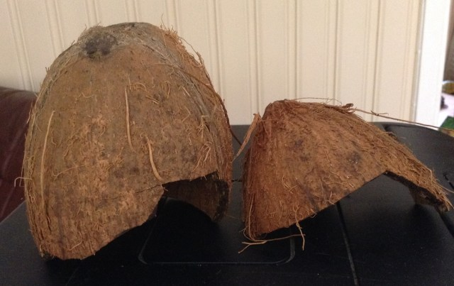 Kokosnøtthuler