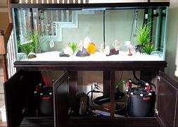 Пресноводный аквариум на заказ