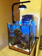 morskoy-akvarium-5.1