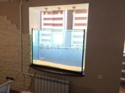 presnovodnyy-akvarium (13)