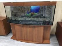 presnovodnyy-akvarium (3.6)