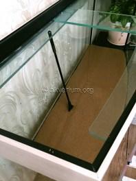presnovodnyy-akvarium (4.2)