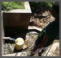 SpringwaterCollecting small.jpg