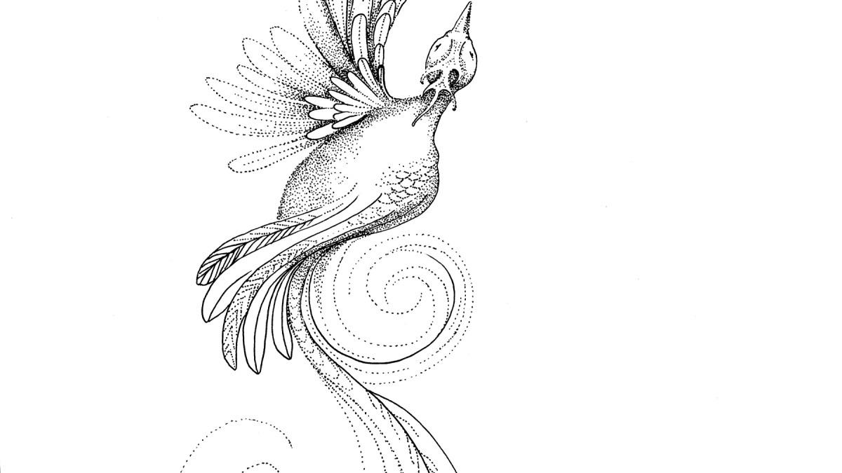 Master Brogal's firebird phantom