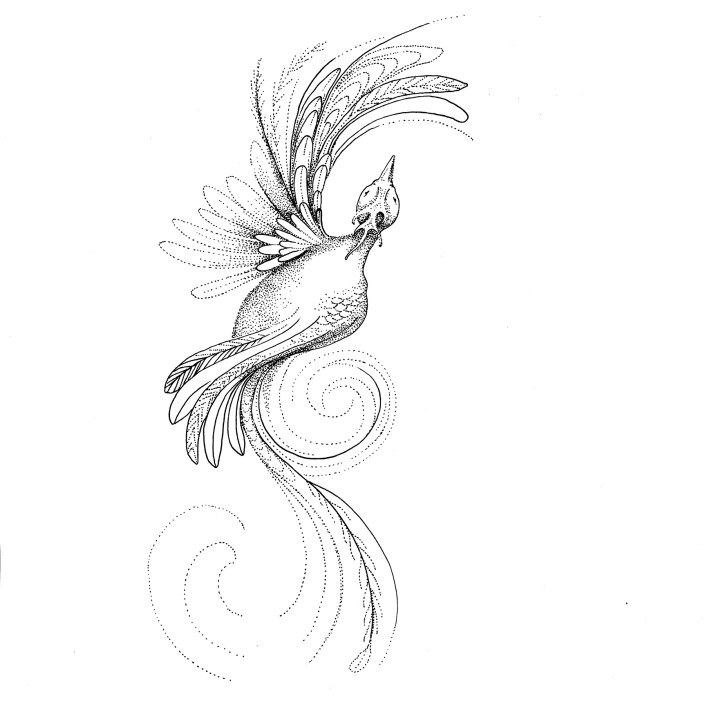 Master Brogal's fire bird phantom