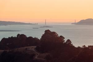 The Bay at Sunset with trees in the foreground.