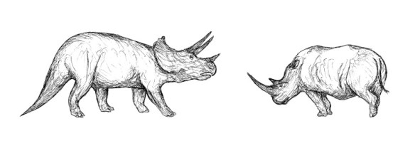 rhino-and-triceratops