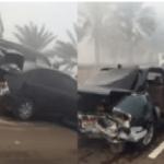 بالفيديو.. حادث تصادم مروع بين 69 سيارة بأبو ظبي