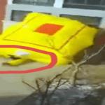 بالفيديو: رجل يسقط من الدور الـ25