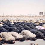 فيديو وصورة لجنود رعد الشمال وهم يؤدون الصلاة بميدان التدريب