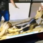 بالفيديو: هجوم أسد جائع على فنانة لبنانية شهيرة!