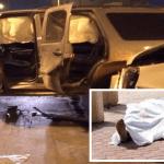 """إصابة مواطنين بعد اصطدامهما بسيارة """"العسكري قتيل تبوك"""""""