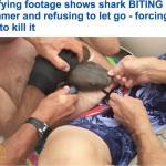 بالفيديو : قرش يصطدم بسباح في أحد سواحل فلوريدا و يحاول التهامه حيا .. شاهد ماذا حدث!