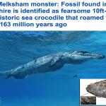 بالصور: تعرف على فصيلة من التماسيح انقرضت منذ 163 مليون سنة