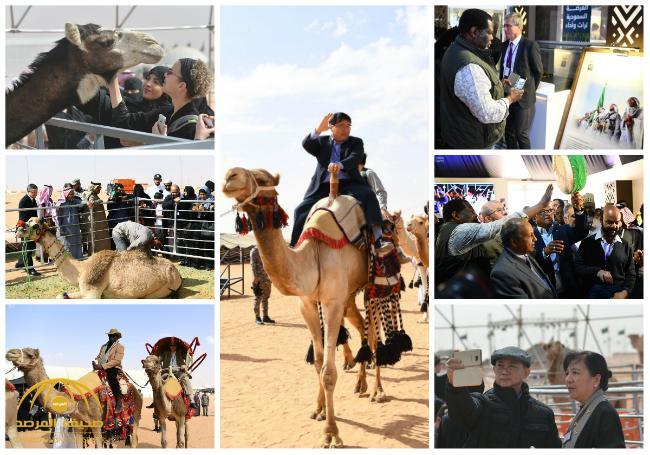 شاهد بالصور .. زيارة أكثر من 70 دبلوماسياً لمهرجان الملك عبدالعزيز للإبل
