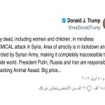 ترمب يشتم الأسد ويهدده : أنت حيوان وستدفع الثمن باهظاً