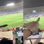"""شاهد.. مشجعة سعودية تشرح طريقة لعب """"الهلال والفتح"""" داخل الملعب ..""""صار يتبادلون!"""""""