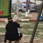 تفاصيل جديدة  حول آخر تطورات قضية سالخ ذبيحته على أرجوحة أطفال وسط متنزه بجازان