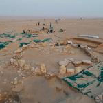 علماء آثار يتوصّلون لاكتشاف مذهل في الكويت قد يغير طريقة تفكيرنا في الحضارة الإنسانية