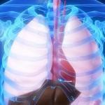 طريقة منزلية بسيطة لتخليص الكبد من السموم !