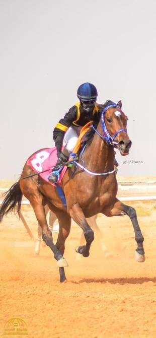 """Watch .. """"Madawi Al-Qahtani"""", the first Saudi horse to receive """"Imagination"""" license from Janadriyah Square"""