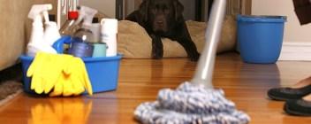شركات نظافة بالرياض شركة تنظيف بالرياض شركة تنظيف بالرياض 0567600026