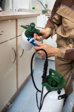 شركة رش مبيد بالدمام  شركة رش مبيدات بالدمام 0567600026                                           1