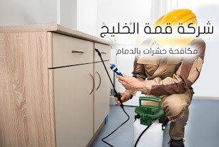 شركة مكافحة حشرات بالدمام 0501515313