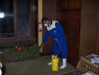 شركة رش مبيدات حشرية بمكة شركة رش مبيدات حشرية بمكة 0500031519 Anti insect in Mecca