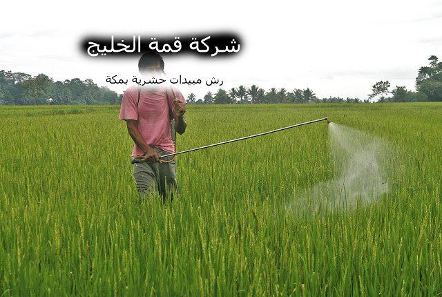 شركة رش مبيدات حشرية بمكة 0500031519