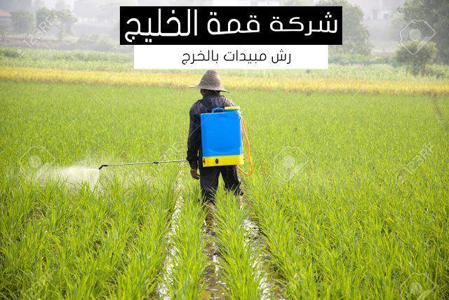 شركة رش مبيدات بالخرج 0501515313