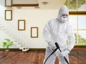 شركة مكافحة حشرات ببريدة  شركة مكافحة حشرات ببريدة 0533942974 Combating insects Company Buraidah