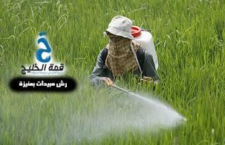 شركة رش مبيدات بعنيزة 0533942974