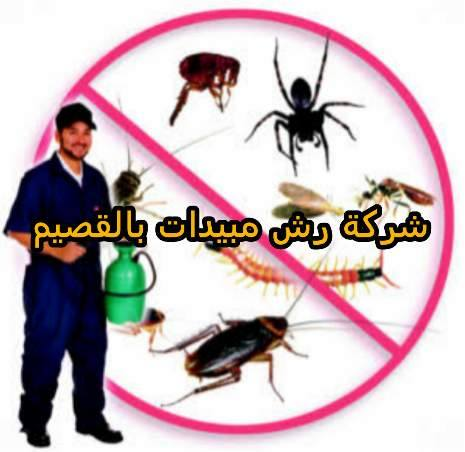 شركة رش مبيدات بالقصيم 0533942974